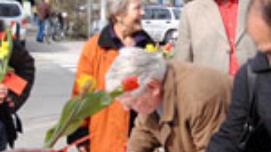 Lister SPD sammelt Unterschriften gegen Kopfpauschale